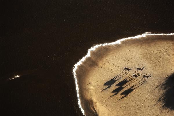 16-aerial-namibia7E702DC4-4FDE-EAFC-88D7-76273AFF0F5F.jpg